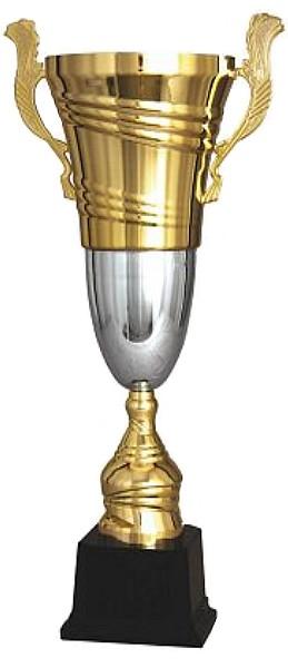 sportovní poháry 2055 D Doba dodání 2-3 týdny.